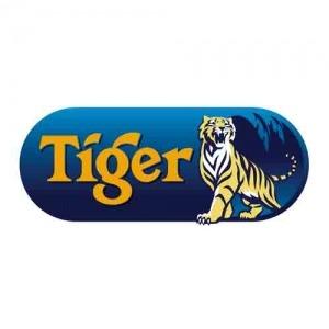 tiger-festivaldelabieres-quimper